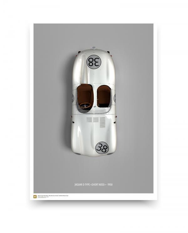 Jaguar D-type Fine art poster